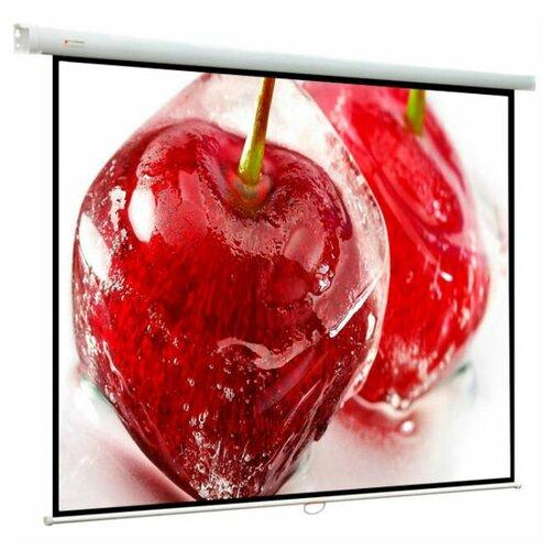 Фото - Экран ViewScreen Breston (1:1) 244*244 (236*236) MW EBR-1106 экран viewscreen breston 16 10 244 244 236 147 5 mw ebr 16104