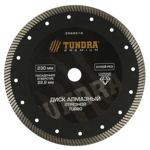 Фото - Диск алмазный отрезной TUNDRA 2966616, 230 мм 1 шт. диск алмазный отрезной tundra 1857756 125 мм 1 шт