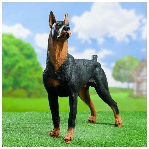 Садовая фигура Собака Доберман большой стоит 20*48*48 см садовая фигура щенок с клубникой 20 х16 см 6255372