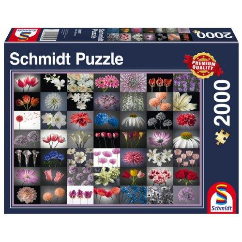 Пазл Schmidt Коллаж Цветы (58297), 2000 дет.