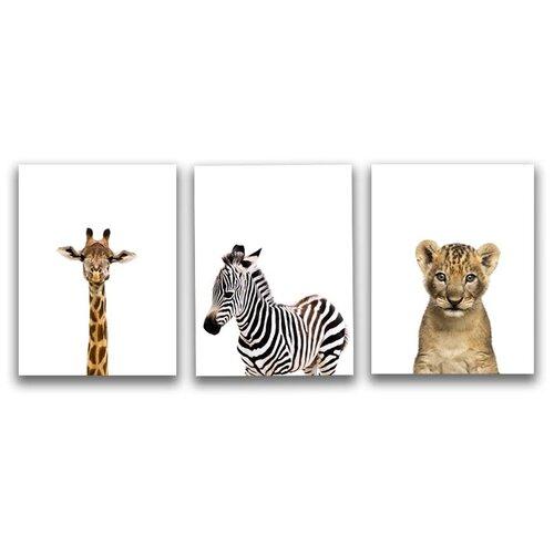 Коллекция из 3-х картин на холсте LOFTime 30х40 жираф зебра львенок К-015-3040