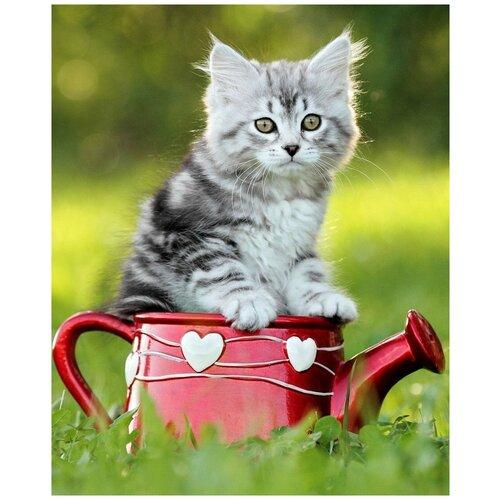Роспись по холсту Милый котенок на природе, 30х40 см Рыжий Кот Х-6786