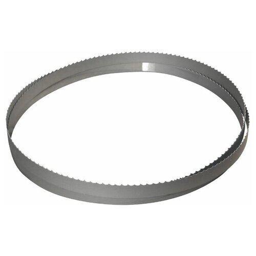Фото - Пильная лента для ленточной пилы BAHCO 3851-6-0.6-H-6-3820 полотно для ленточной пилы bahco 2667х13х0 6мм 3851 13 0 6 h 6 2667