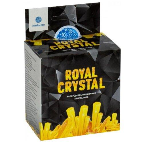 Купить Набор для исследований Intellectico Royal Crystal желтый, Наборы для исследований