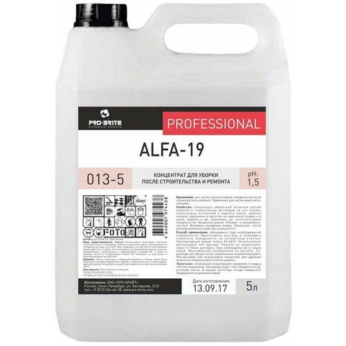 Очиститель Pro-Brite Alfa-19 5 л