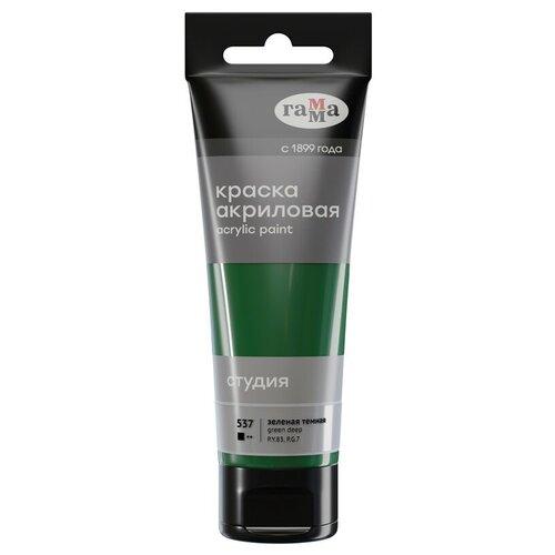 ГАММА Акриловая краска Студия, 75 мл, пластиковая туба (280220) темно-зеленый