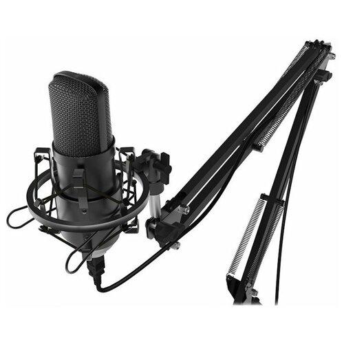 Микрофон Ritmix RDM-169, черный
