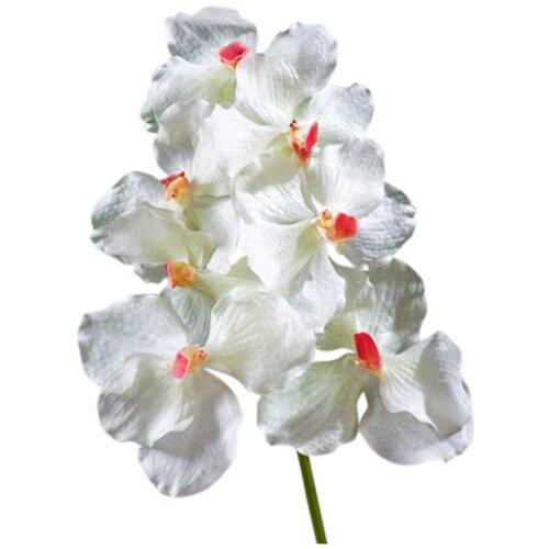Искусственный цветок Орхидея Ванда белая с розовой сердцевиной 36 см pablo de gerard darel белая блузка с рельефной отделкой
