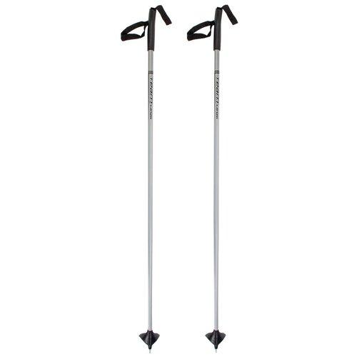 Лыжные палки Larsen Team new серебристый 105