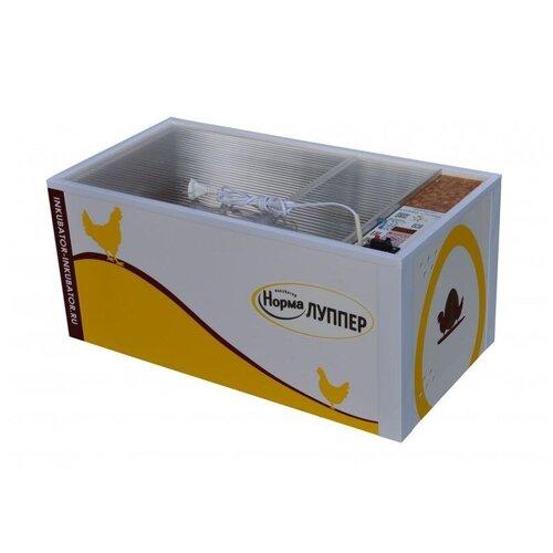 Инкубатор для яиц Норма Луппер на 72 яйца с автоматическим переворотом (12/220В)