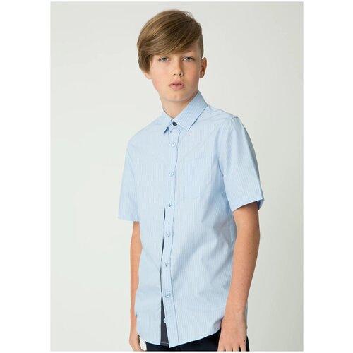 Рубашка Gulliver размер 146, голубой