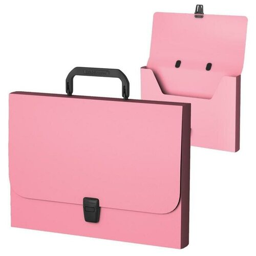 Купить Папка-портфель ErichKrause Matt Pastel, FC, розовый 53305 6485080, Файлы и папки