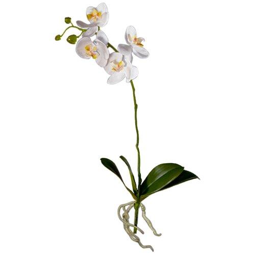 Искусственный цветок Орхидея Фаленопсис белая куст с корнями 57 см pablo de gerard darel белая блузка с рельефной отделкой