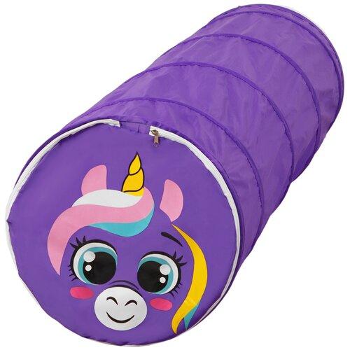 Туннель Школа талантов Туннель, фиолетовый единорог