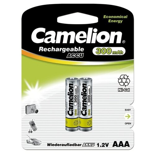Фото - Аккумулятор бытовой Camelion R03 AAA BL2 NI-CD 300mAh 2 шт way ahead 2 pupil s book cd rom