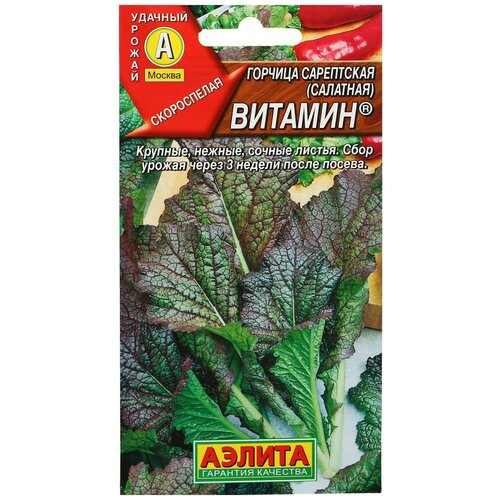 Семена Горчица салатная Витамин, 0,5 г семена горчица салатная частушка 0 5 г