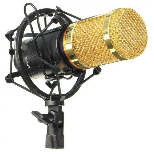 Микрофон FZONE BM-800, черный