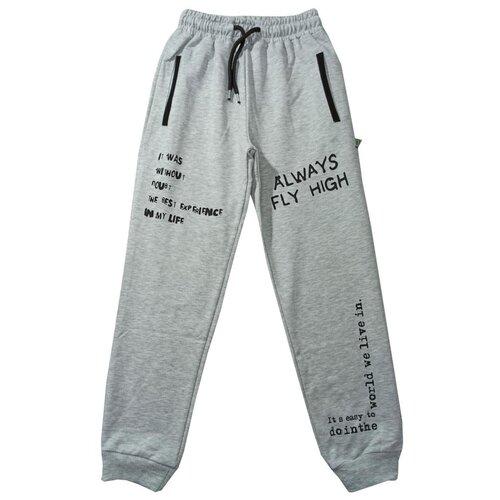 Спортивные брюки Папитто размер 146-152, светло-серый брюки orby 100117 размер 146 152 черный