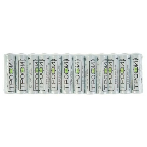Фото - Батарейка алкалиновая Трофи Eco, AA, LR6-12S, 1.5В, спайка, 12 шт. 2478474 батарейка energizer max plus aa 4 шт