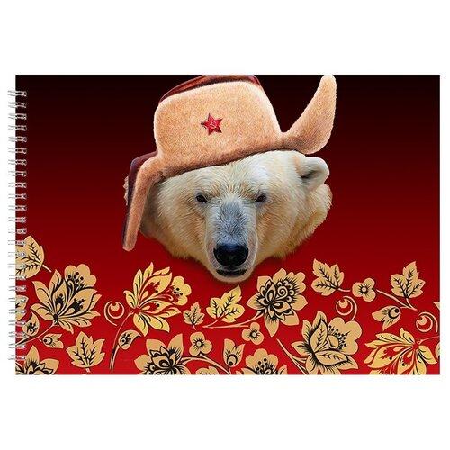 Альбом для рисования, скетчбук Белый медведь в шапке