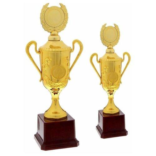 Кубок спортивный 088C Цвет зол, 23,5 х 9.5 х 6,5 см 1510573 по цене 404