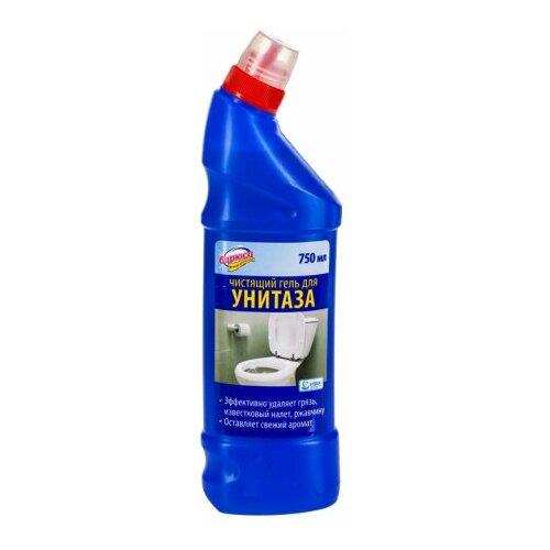 Фото - Чистящий гель «Бирюса» для унитаза, 750мл 51 13262z01