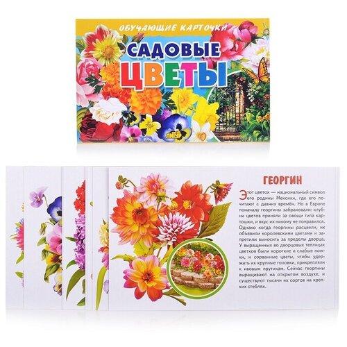 Фото - Набор карточек Литур Садовые цветы 19x12 см 16 шт. набор карточек агабум цветы 20 шт
