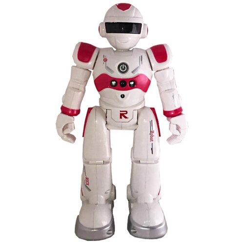 Купить Радиоуправляемый интерактивный робот / Робот / Интерактивная игрушка robor-R4GDRed-01, Panawealth Inter Holdings, Роботы и трансформеры