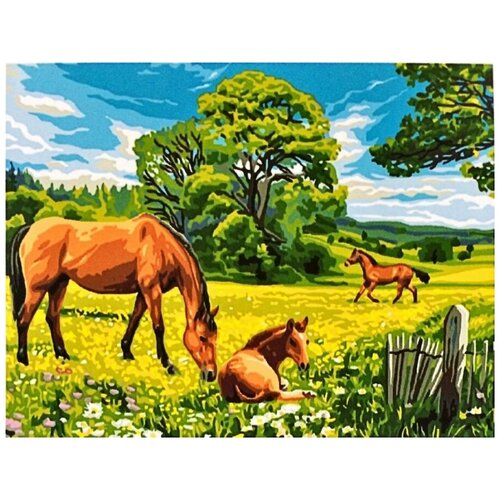 Купить Картина по номерам Paintboy «Солнечный луг» (холст на подрамнике, 30х40 см), Картины по номерам и контурам