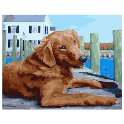 Картина по номерам Paintboy «Пес на причале» (холст на подрамнике, 40х50 см) картина по номерам paintboy маленькая деревушка холст на подрамнике 40х50 см
