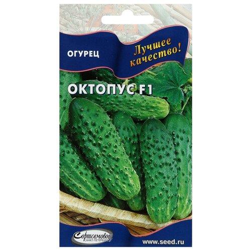 Семена Огурец Октопус F1, 8 шт семена огурец сальери f1 8 шт в цветной упаковке седек