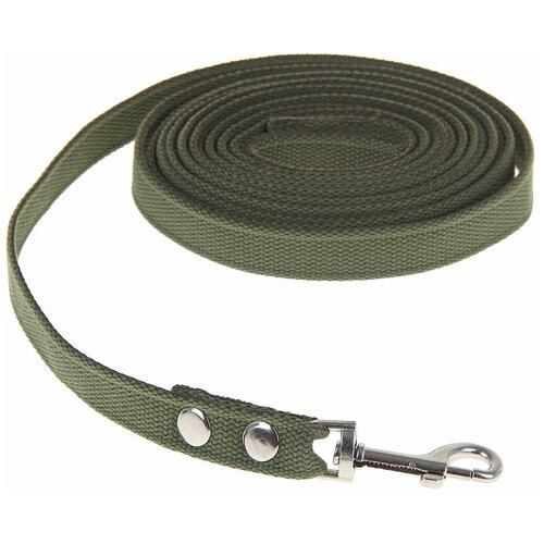 Поводок брезентовый для собак 5 м х 2 см, тёмно-зелёный поводок брезентовый зоомарк ширина 2 5 см длина 120 см