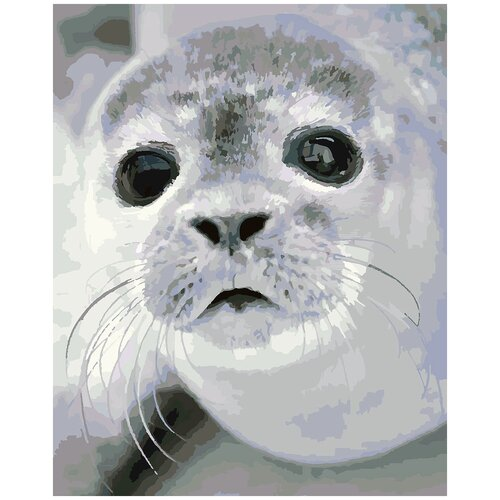 Купить Картина по номерам Малыш тюлень, 60 х 70 см, Красиво Красим, Картины по номерам и контурам