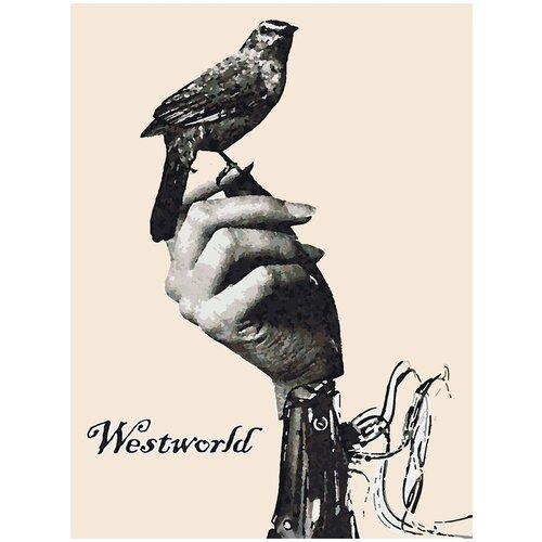 Картина по номерам Мир Дикого Запада - Bird on hand, 60 х 80 см