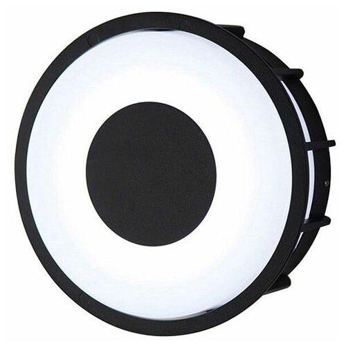 Настенно-потолочные светильники L'arte Luce L78056.31