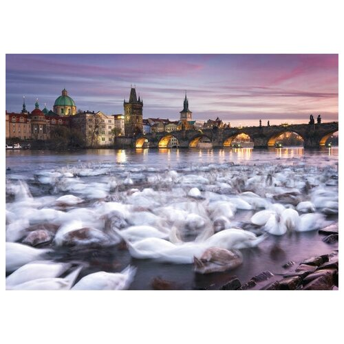 Пазл Schmidt 1000 деталей: К.Рингер. Прага.Лебеди