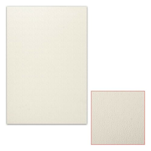 Картон белый грунтованный для масляной живописи, 50х70 см, односторонний, толщина 0,9 мм, масляный грунт картон грунтованный подольские товары для художников для масляной живописи 50 х 70 см 4610003280871
