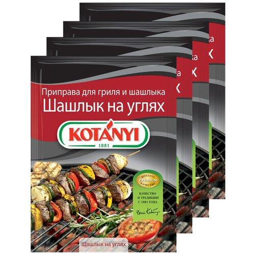 Приправа для гриля и шашлыка Шашлык на углях KOTANYI, пакет 30г (x4) приправа для чесночного соуса kotanyi пакет 13г x4