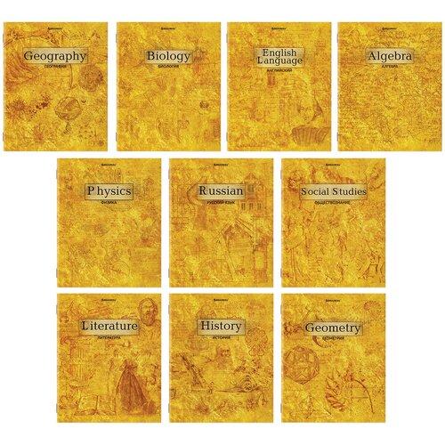 Тетради предметные Brauberg комплект 10 предметов, Gold, 48 листов, металлизированный картон (404033)