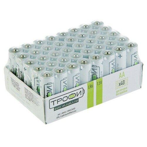 Фото - Батарейка алкалиновая Трофи Eco, AA, LR6-40BOX, 1.5В, набор 40 шт. 2478472 батарейка energizer max plus aa 4 шт