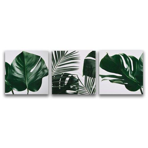 Комплект картин на холсте LOFTime 3 шт 30Х30 тропические растения 1 К-038-3030