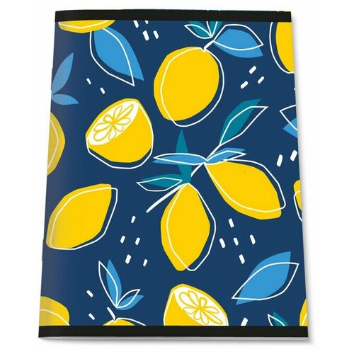 Купить Тетрадь общая А4, 96л, кл, скоб, блок-офсет-2 Attache Лимоны синие 3 штуки, Тетради