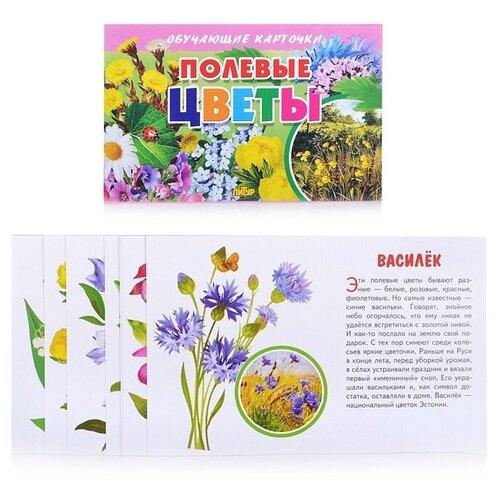 Фото - Набор карточек Литур Полевые цветы 19x12 см 16 шт. набор карточек агабум цветы 20 шт