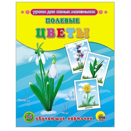 Фото - Набор карточек Проф-Пресс Уроки для самых маленьких. Полевые цветы 22x17 см 16 шт. набор карточек агабум цветы 20 шт