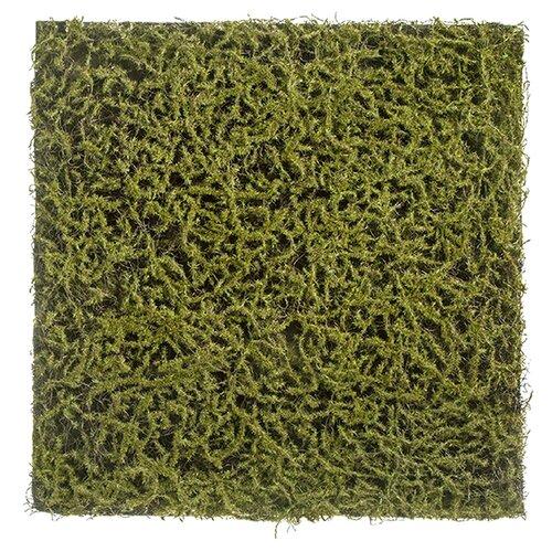 цвет оливковый Искусственное растение Мох Сфагнум Fuscum оливковый (полотно) 50x50 см, цвет: оливковый