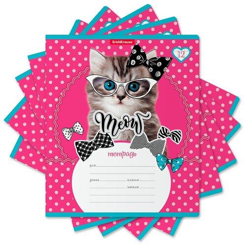 Купить ErichKrause Тетрадь Cool Cat А5+ 170х203 мм 12 лна скрепке 60 г/кв.м крупная клетка 46630 19 шт., Тетради