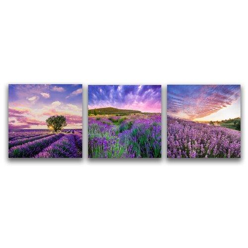 Комплект картин на холсте LOFTime 3 шт 30Х30 лавандовые поля 1 К-045-3030