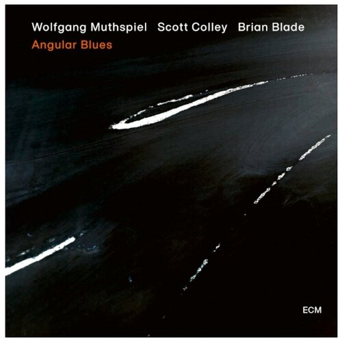Wolfgang Muthspiel, Scott Colley, Brian Blade – Angular Blues (LP) виниловая пластинка w muthspiel w s colley b blade angular blues 0602508485213