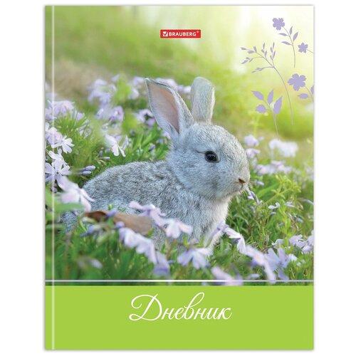 Дневник 5-11 класс 48 л., твердый, BRAUBERG, глянцевая ламинация, с подсказом, Милый кролик, 105575 дневник 1 11 класс 40 л твердый brauberg глянцевая ламинация драйв 106047