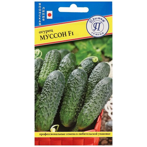 Семена Огурец Муссон F1, 5 шт семена огурец сальери f1 8 шт в цветной упаковке седек